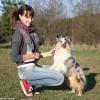 septynios-pamokos-kaip-saugiai-bendrauti-su-gyvunais
