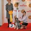 Best in Show, 2 vieta, Annibalas Sidabrinė Garndinėlė