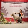 2013-04-13-Lietuvos-cempionu-cempionatas-IMG_9803