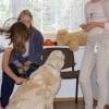 Uzsiemimas su sunimis