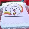 Baltas kaip sniegas samojedu klubo tortas