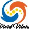vivid logo (1)