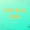 top-suo-2019-rinkimu-tvarka