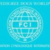 tarptautinei-kinologu-federacijai-rupi-parodu-kokybe